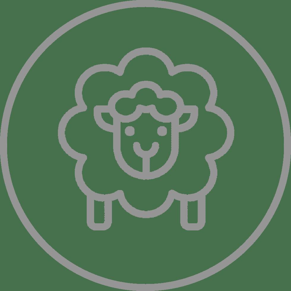 Foundation Character - Sacrificial Sheep Icon